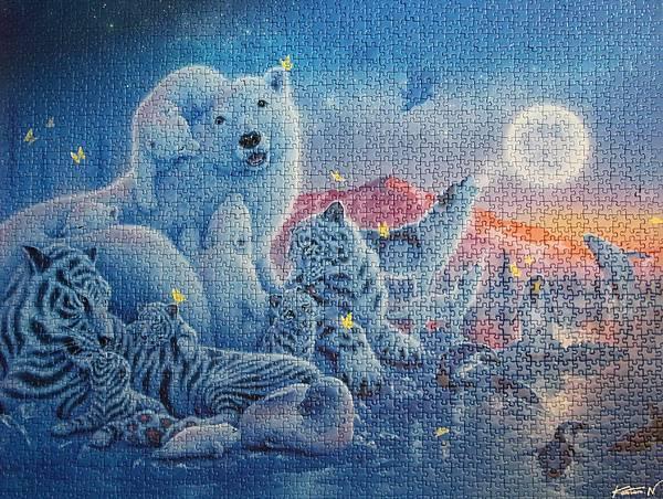 In the Polar Moonlight 01
