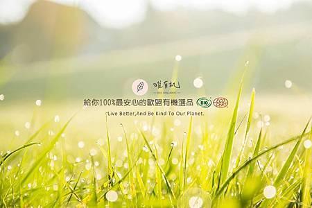 13901449_643210432519501_7689370786427855039_n.jpg