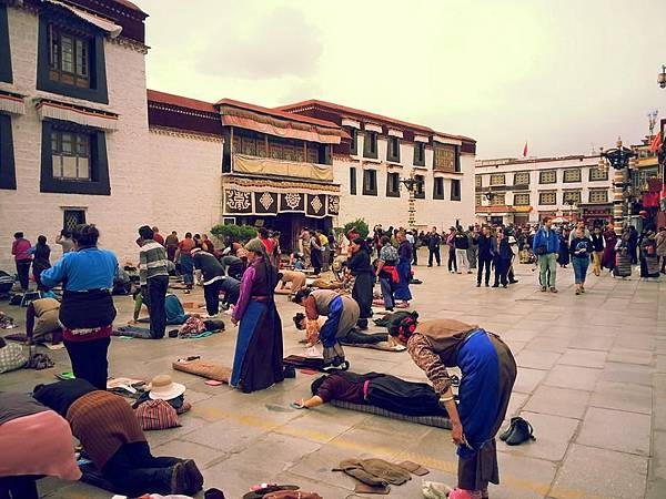 藏人嗑長頭