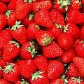 愛旅遊_草莓戀上巧克力