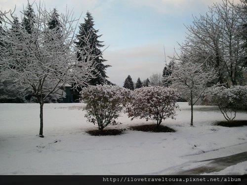 冬天屋外雪景
