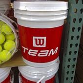 96741 WILSON  網球練習球 72顆 附桶子 1999 03