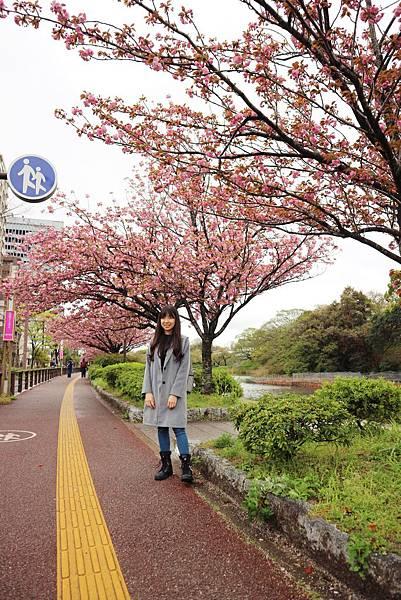 九州行 12.JPG