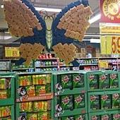 菜瓜布蝴蝶