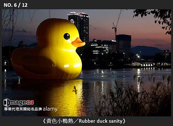 06-《黃色小鴨熱/Rubber duck sanity》