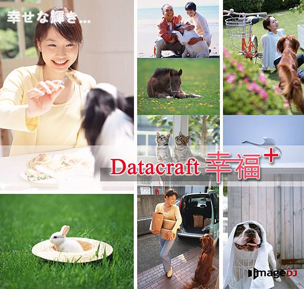 Datacratf幸福+可愛動物素材圖庫-stock_animals