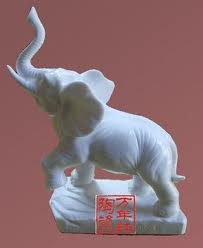 大象001.jpeg