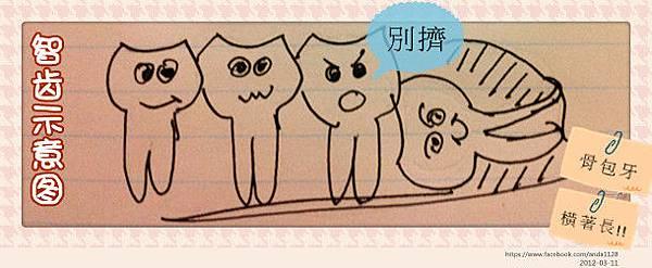 IMG_1159_副本
