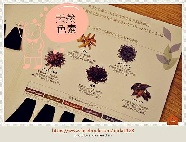 DSC_0015_副本