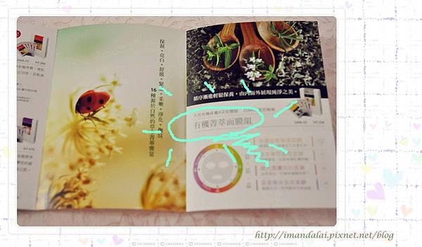 DSC_0799_副本