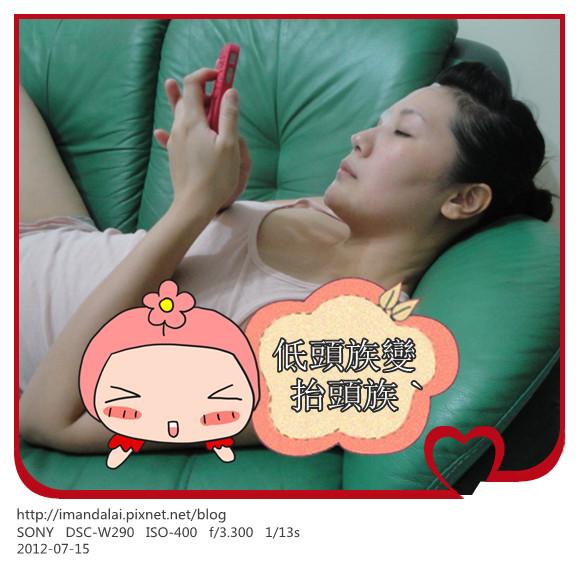 DSC02544_副本