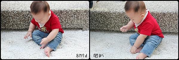 IMG_6806-horz.jpg