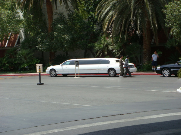 limo 滿街跑