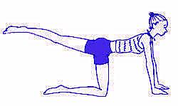 [推薦分享]鄭多燕瘦屁股+大腿+提臀方法方式教學-愛美是女人的天性&最大課題!產後瘦身鄭多燕教學影片提臀方法方式心得分享 (6)