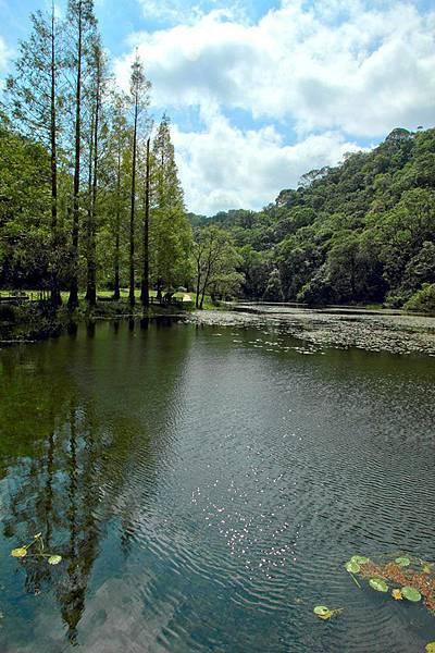 福山植物園.jpg
