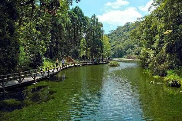 福山植物園生態池.jpg