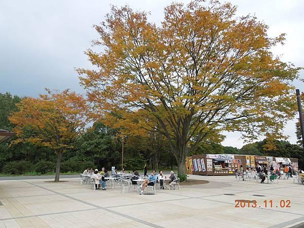 日本東北12.JPG