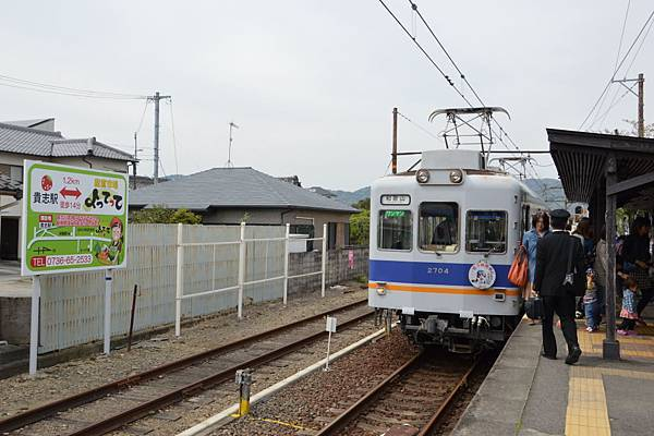 DSC_00590007.JPG