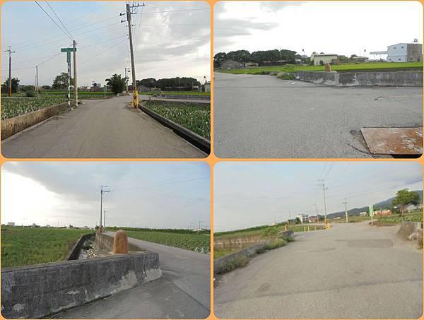 DSC010210009-tile.jpg