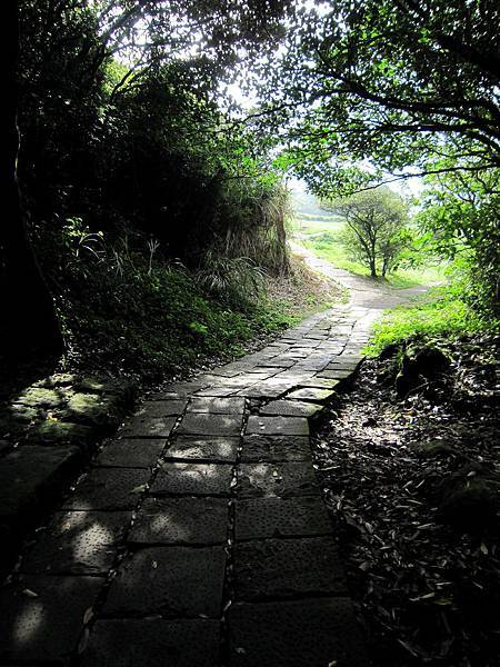 在崎嶇的山路中終於看到出路