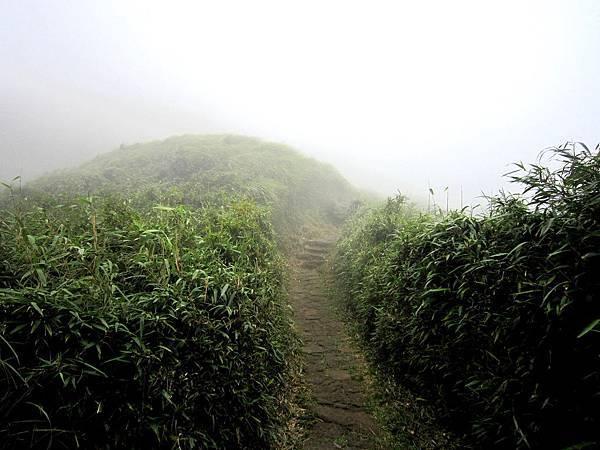 主峰上只有霧茫茫的一片跟吹走一切煩惱的大風