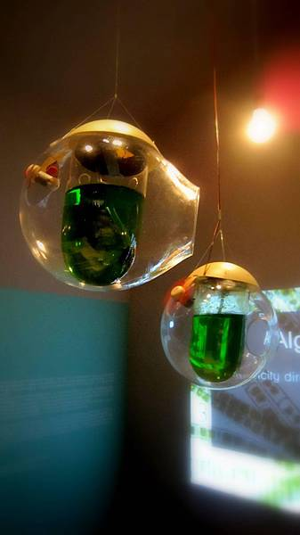 想不到藻類光合作用可以拿來發電