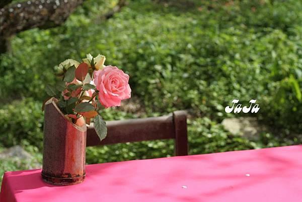 園區內供用餐的桌上都有擺放黃、粉玫瑰