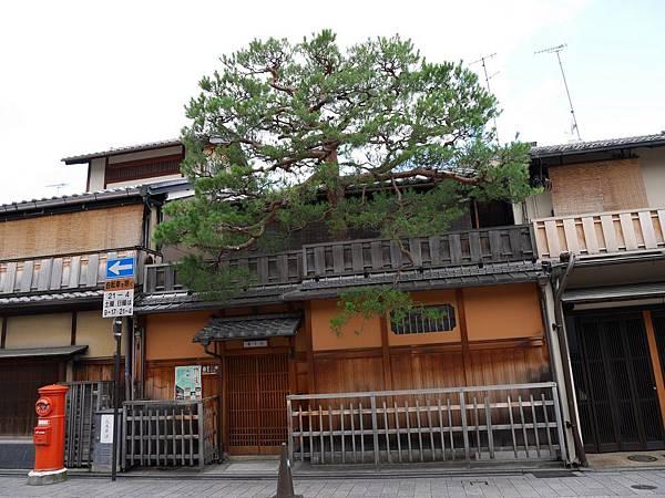 2015京都大阪0606 (13).jpg