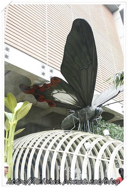 國立臺灣歷史博物館_053.JPG