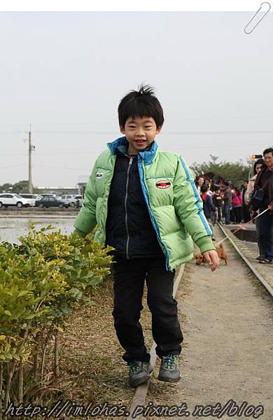 再訪嘉義新港板頭村_09.JPG