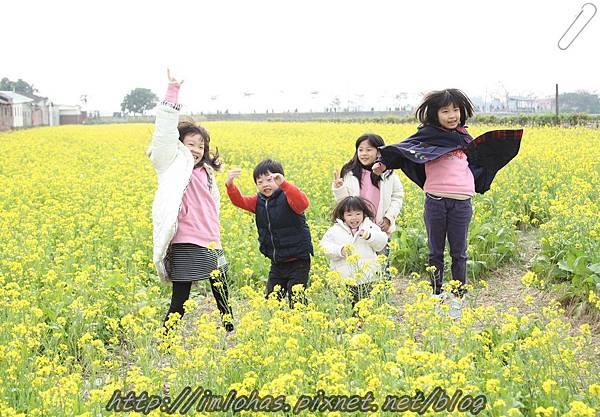 再訪嘉義新港板頭村_44.JPG