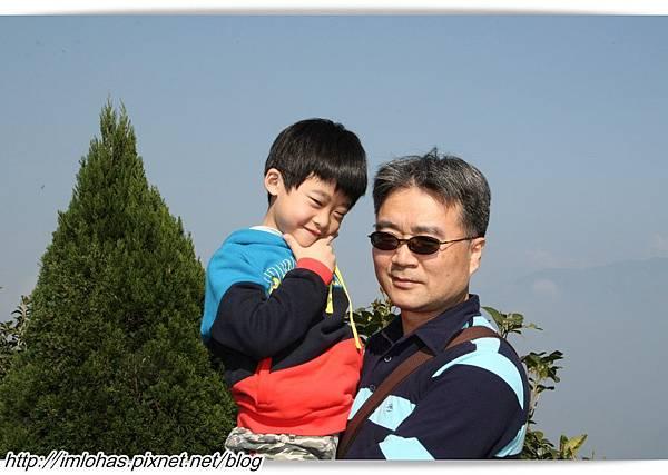 嘉義梅山碧湖觀光茶園_11.JPG