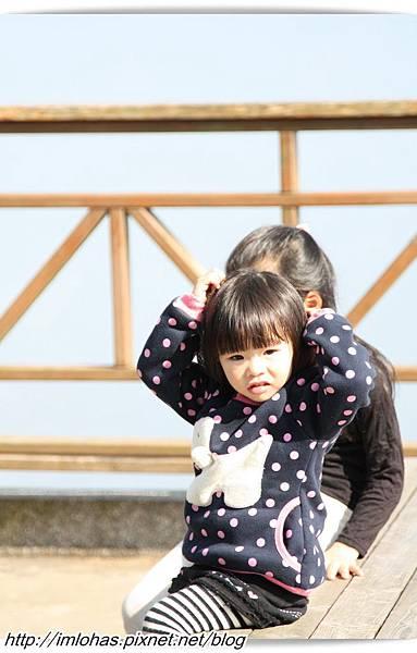 嘉義梅山碧湖觀光茶園_14.JPG