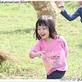 嘉義溪口花海節_18