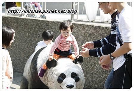 2011-02-26 三日遊(小人國、木柵動物園)87.JPG