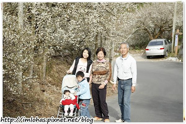 2011-01-09 信義鄉烏松崙賞梅花、梅子夢工場園區076.JPG