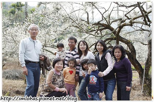 2011-01-09 信義鄉烏松崙賞梅花、梅子夢工場園區027.JPG