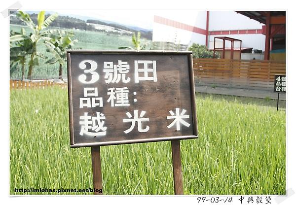 中興榖堡02.JPG