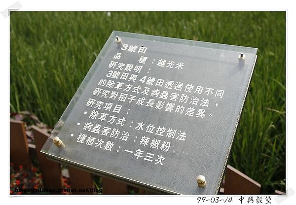 中興榖堡05.JPG
