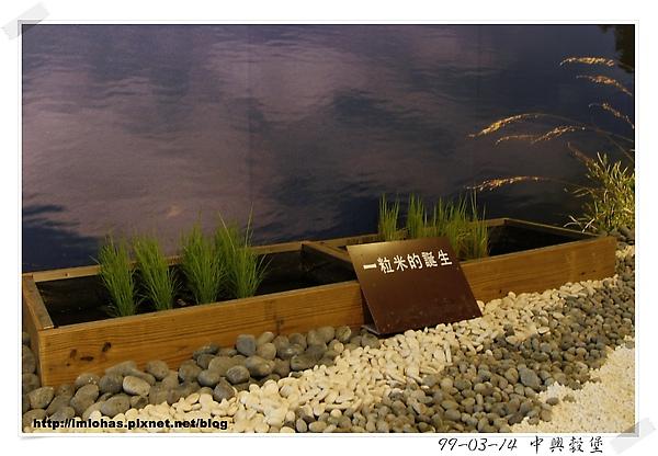 中興榖堡11.JPG
