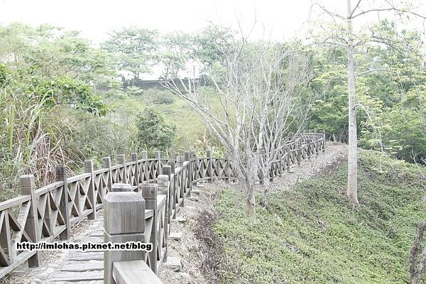關子嶺紅葉公園03.JPG