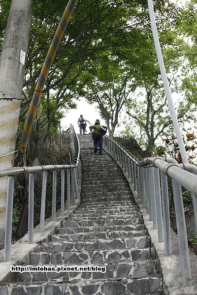 關子嶺紅葉公園29.JPG