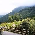 竹林與遠山
