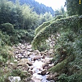 山谷裏的小溪