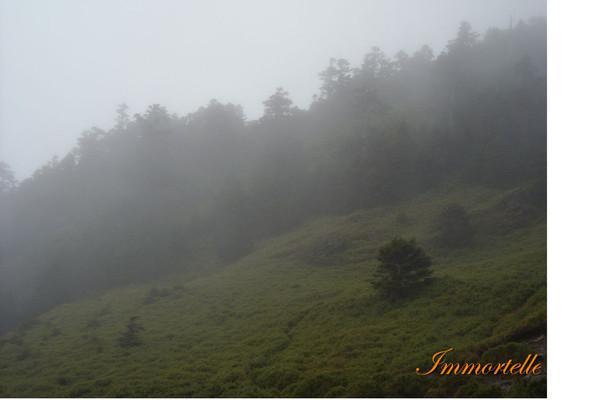 颱風來臨前,向雲霧深處的合歡山前進