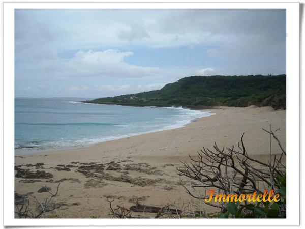 被保護的白砂灘