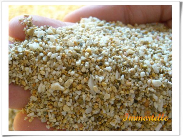 由貝殼沖刷出的細砂