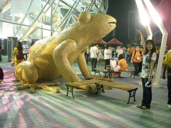 入口的竹編台北樹蛙