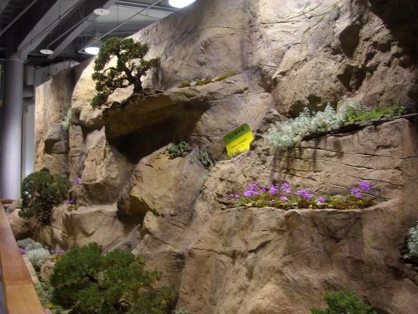 台北花博-未來館之高山植物區