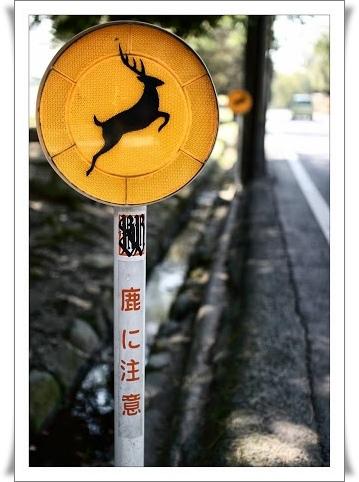 04奈良公園_告示牌.jpg
